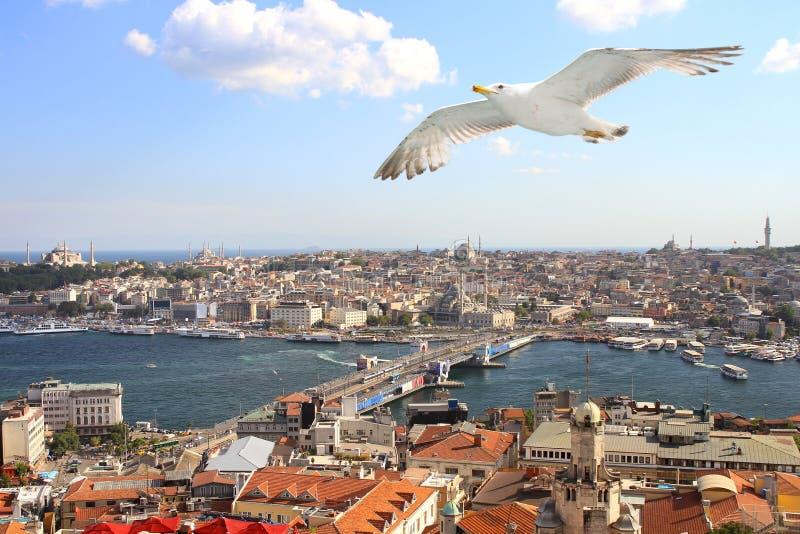 Ptaków oka widok Istanbuł zdjęcia royalty free