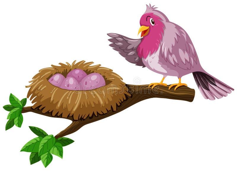 Ptak i ptaka gniazdeczko z jajkami ilustracja wektor
