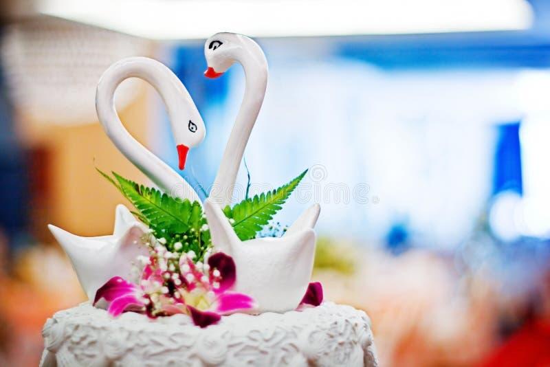 ptak miłość obraz stock