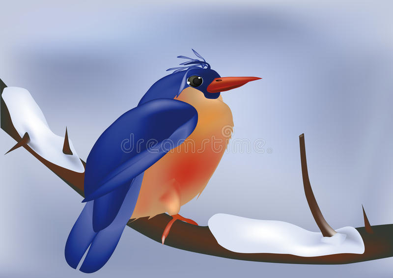Ptak na gałąź w zima royalty ilustracja