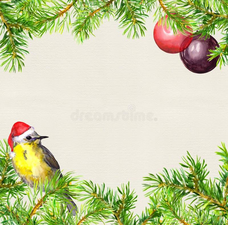 Ptak w czerwonym Santa kapeluszu, choinka rozgałęzia się, baubles rama więcej toreb, Świąt oszronieją Klaus Santa niebo akwarela ilustracja wektor