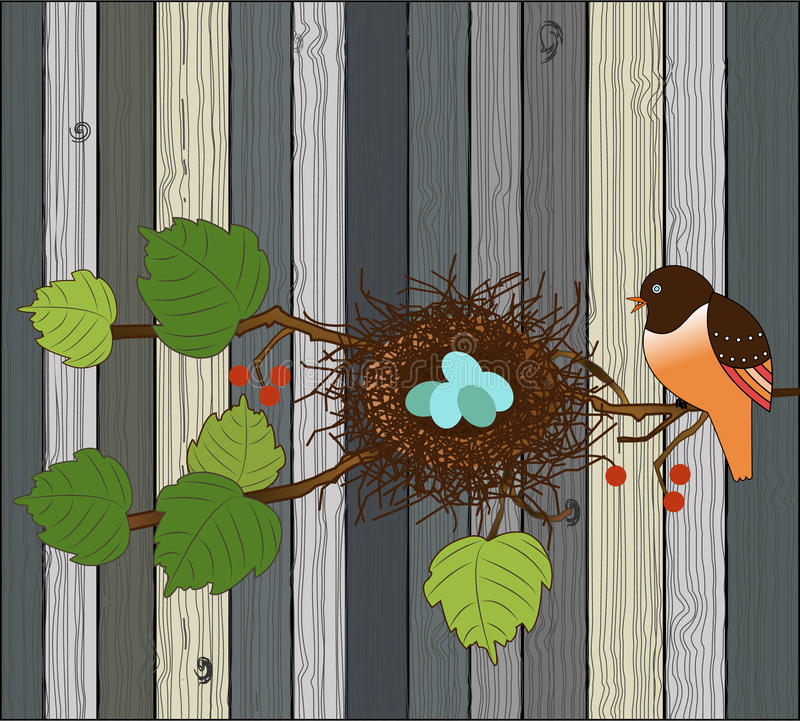 Ptak z gniazdeczkiem i jajka nad drewnianym deski tłem zdjęcie stock