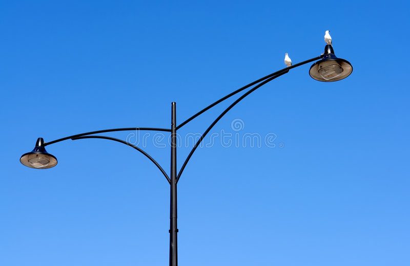 ptaka bliźniak lampowy uliczny zdjęcie stock