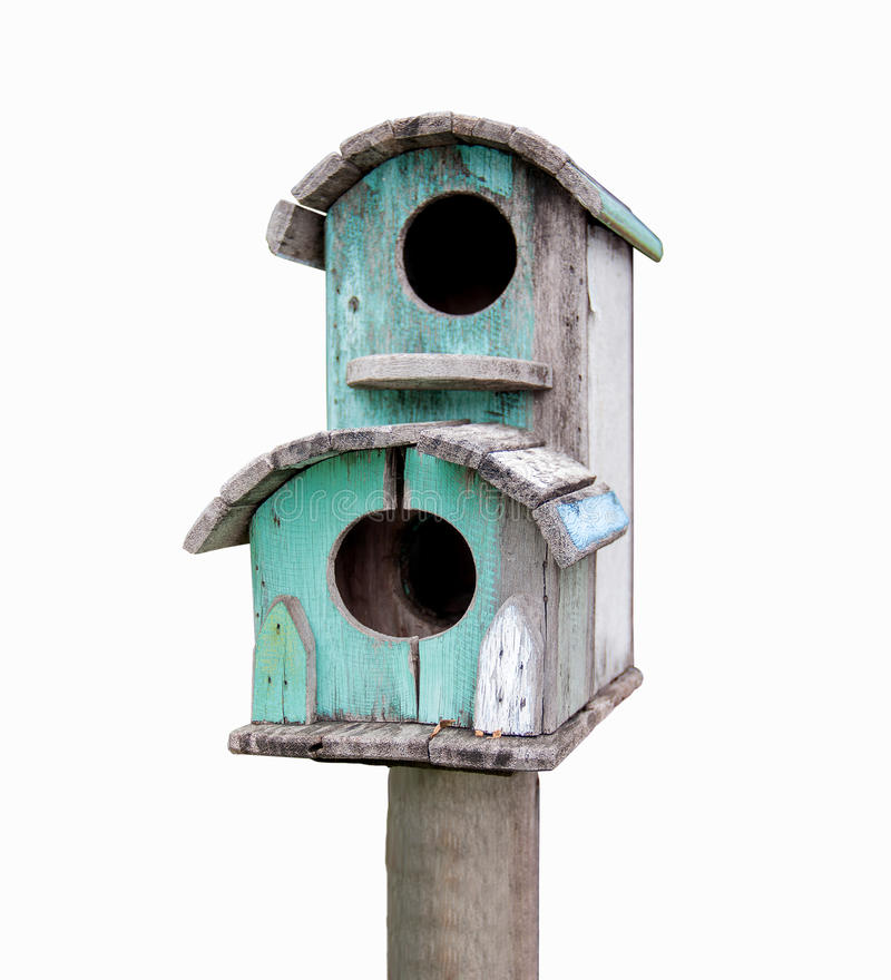 Ptaka dom zdjęcia royalty free