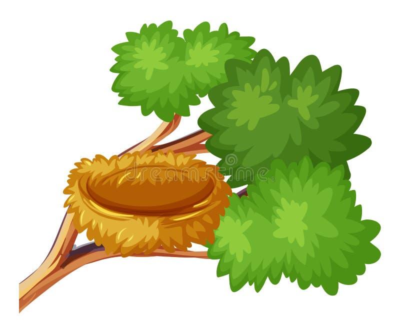 Ptaka gniazdeczko na gałąź ilustracji