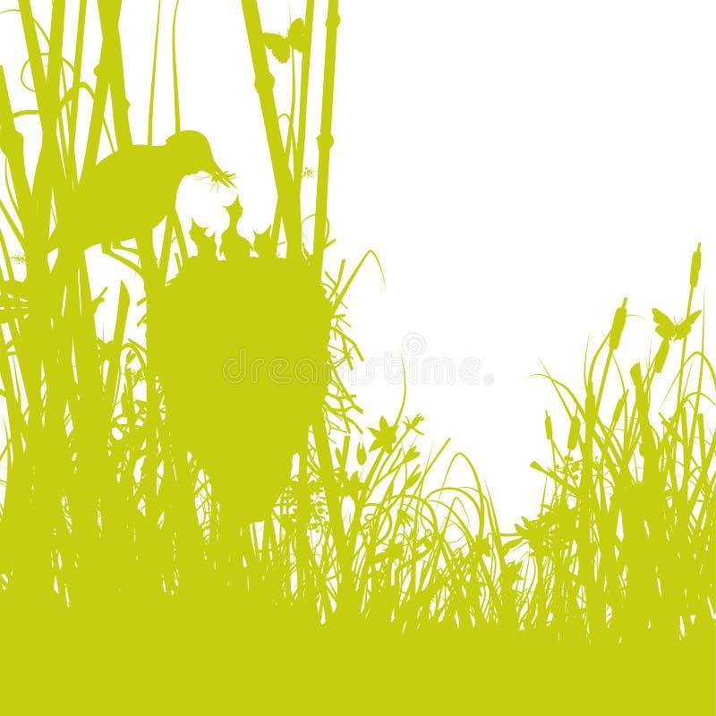 Ptaka gniazdeczko w płochach ilustracja wektor
