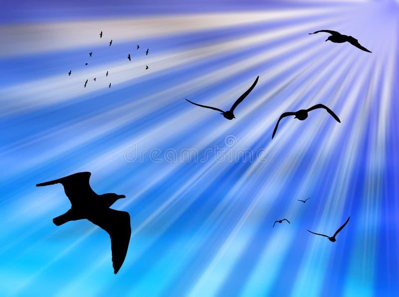 ptaka słońce royalty ilustracja
