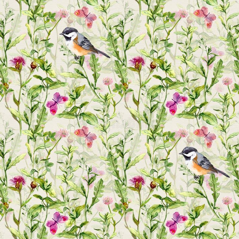 Ptaki, dzicy ziele, trawa, kwiaty, wiosna motyle Częstotliwy wzór akwarela royalty ilustracja