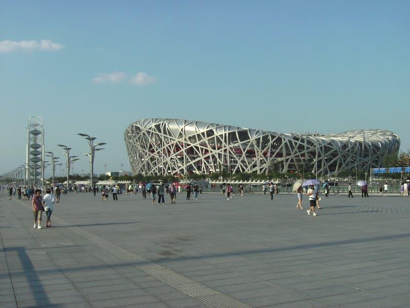 Ptaki Gniazdują Olimpijskiego stadium, Pekin, Chiny zdjęcia royalty free