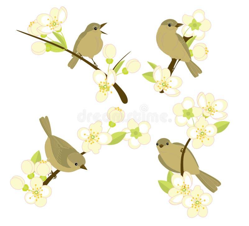 Ptaki na kwiecenie gałąź ilustracja wektor