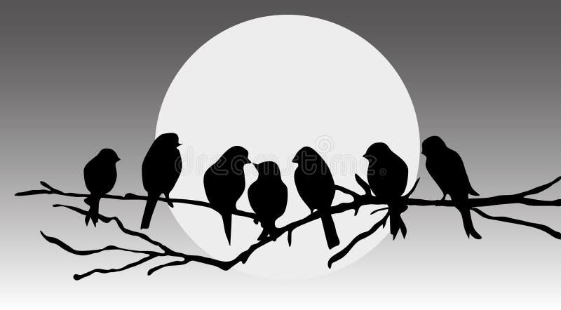ptaki rozgałęziają się obsiadanie ilustracji