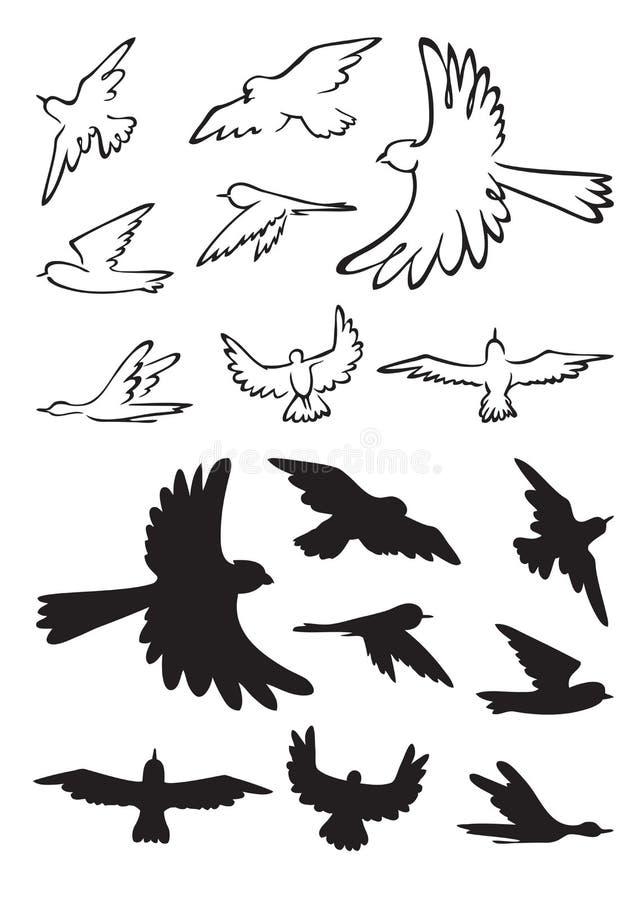 Ptaki w lot sylwetce ilustracji