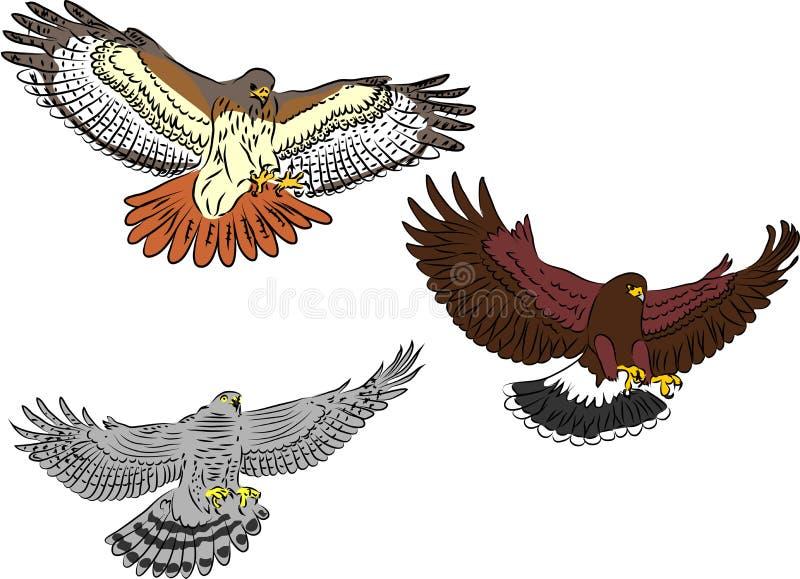 Ptaki zdobycza napadanie royalty ilustracja