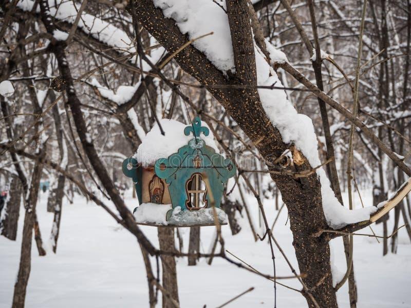 Ptasi dozownik na drzewie pod niedawno spadać śniegiem w Novosibirsk, Rosja obrazy royalty free