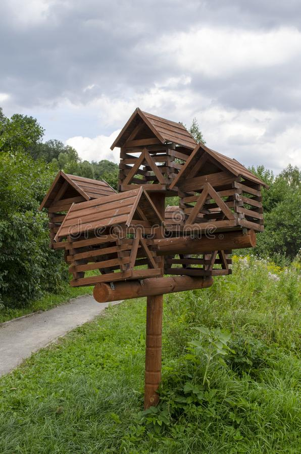 Ptasi dozowniki w parku zdjęcie royalty free