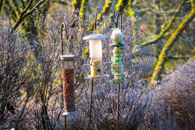 Ptasi dozowniki z mieszanymi ziarnami w pięknym ogródzie podczas zamarzniętej zimy obraz stock
