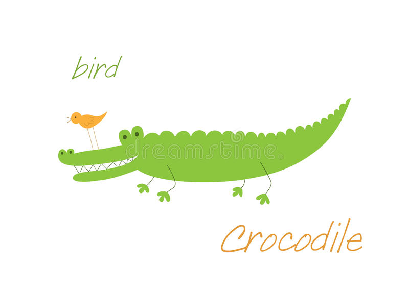 ptasi krokodyl ilustracji
