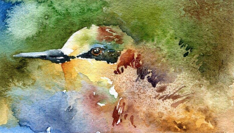 Ptasi zjadacz na abstrakcjonistycznym tle royalty ilustracja