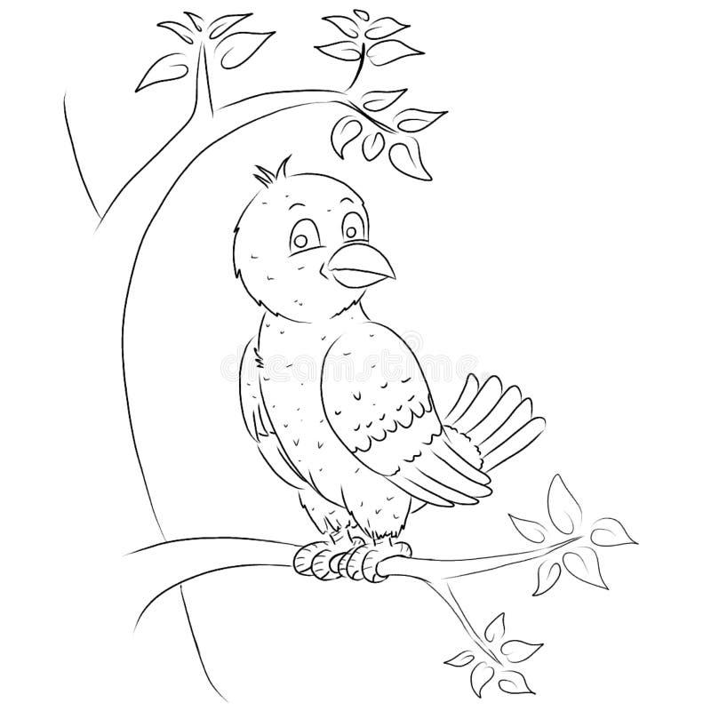 Ptasia kreskówka kolorytu strona royalty ilustracja
