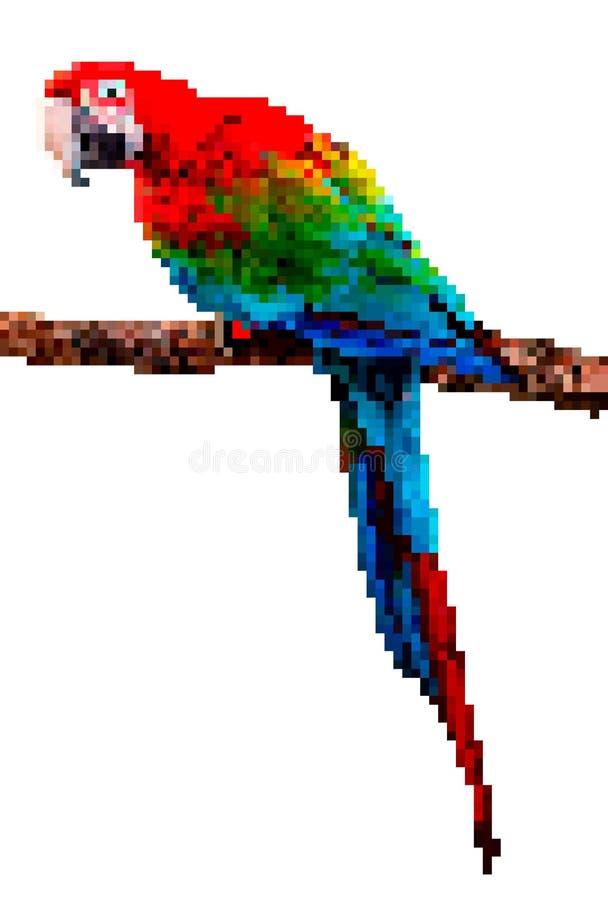 Ptasia piksel sztuka Papuzia piksel ilustracja odizolowywająca na białym tle ilustracji