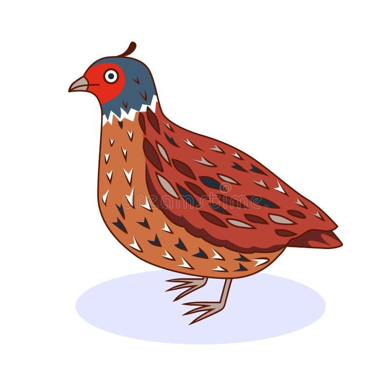 Ptasia przepiórka Kalifornia przepiórka Kreskówka styl royalty ilustracja