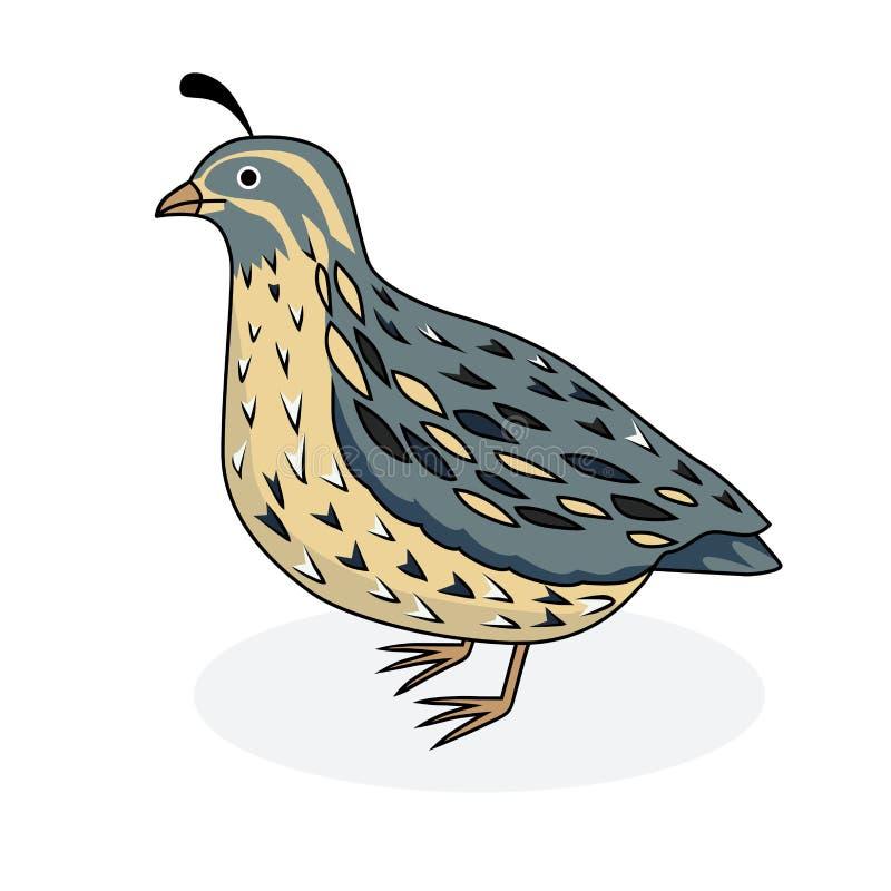 Ptasia przepiórka przepiórka Kreskówka styl royalty ilustracja