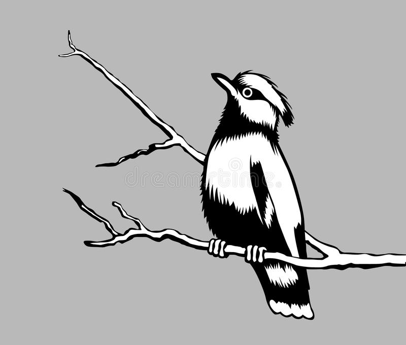 ptasia sylwetka ilustracja wektor