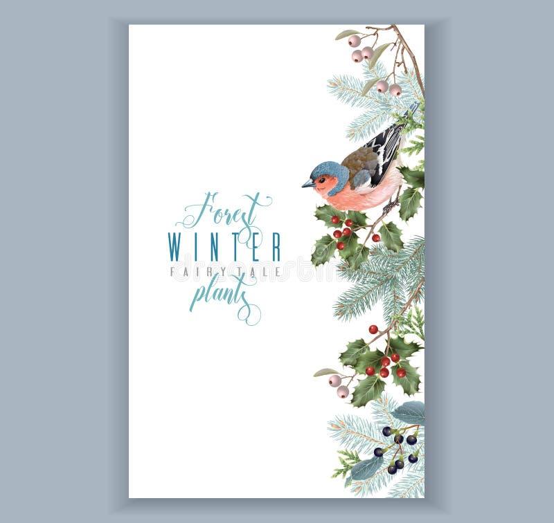 Ptasia zimy granica ilustracji