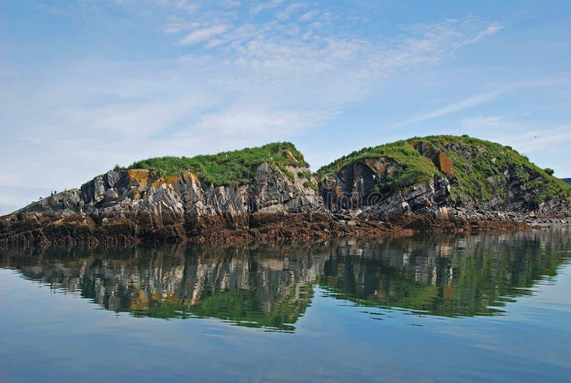 ptasiej wyspy kodiak target533_0_ daleko zdjęcie stock