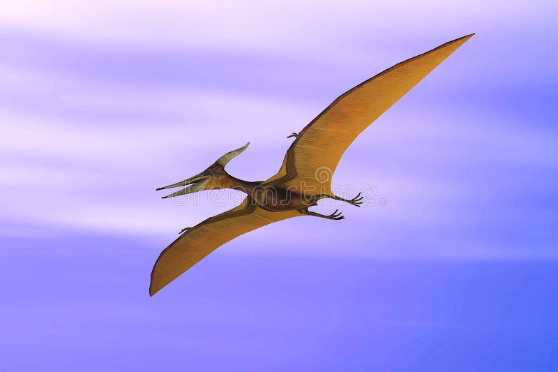 Pteranodon illustrazione di stock