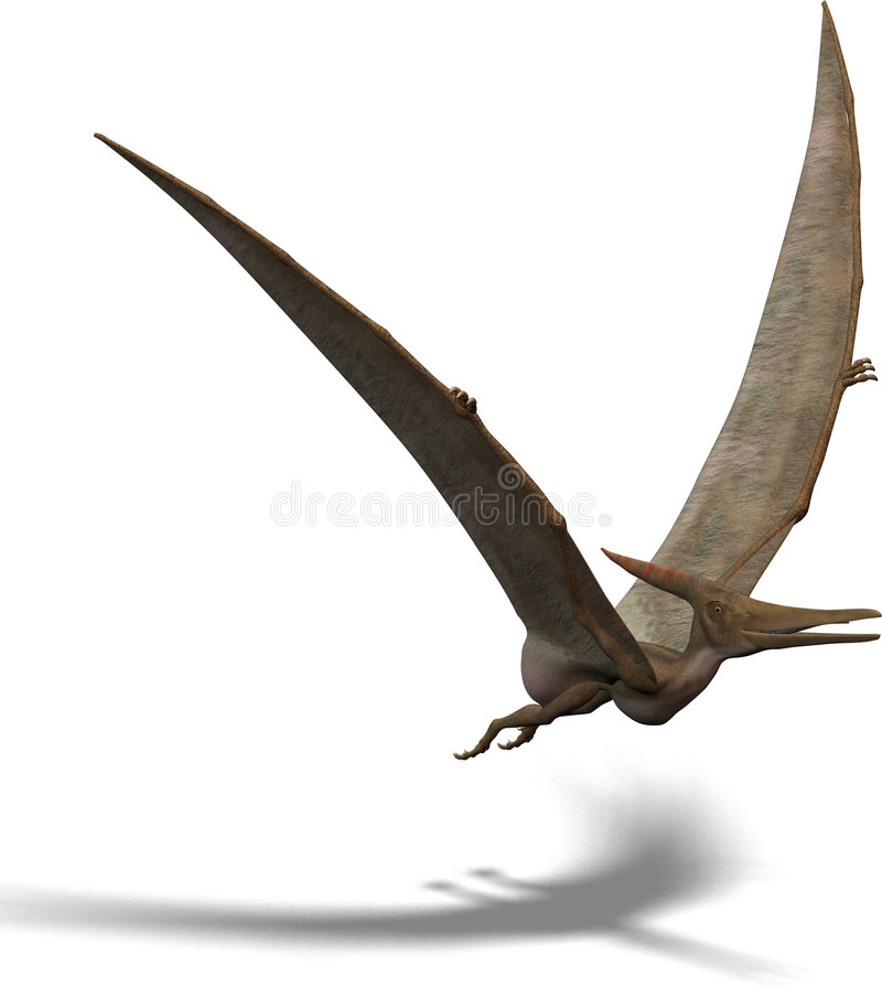 Pteranodon libre illustration