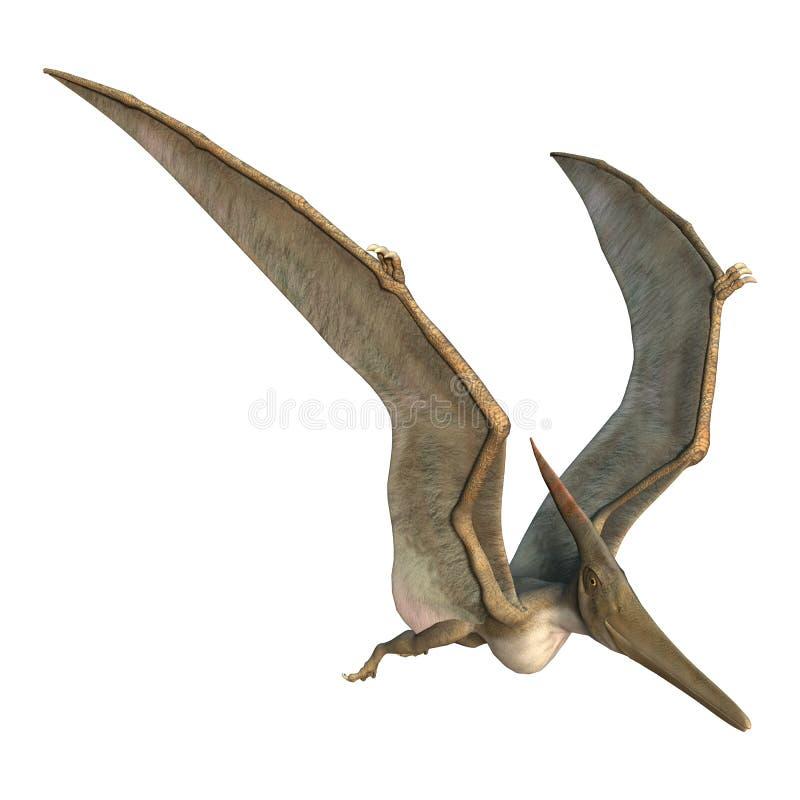 Pteranodon libre illustration