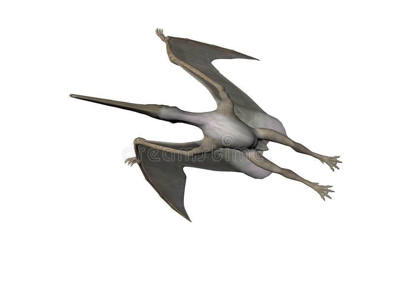 pteranodon иллюстрация штока
