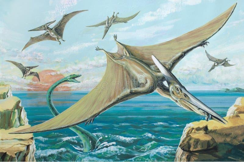 Pteranodon 皇族释放例证