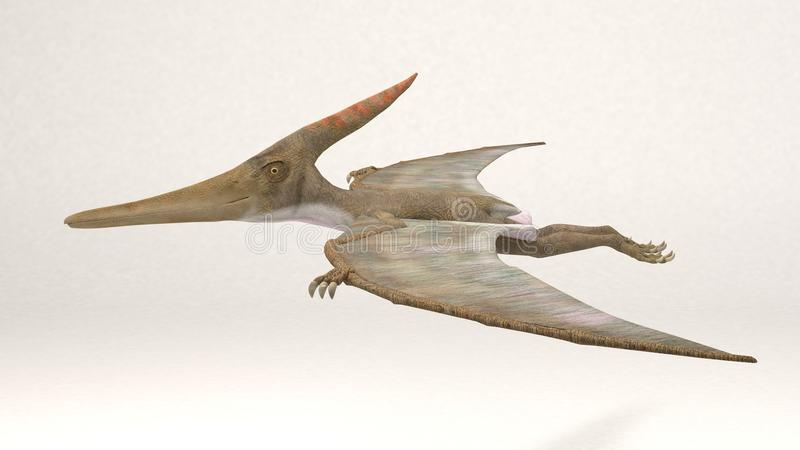 Pteranodon-Dinosaurier lizenzfreie stockfotos