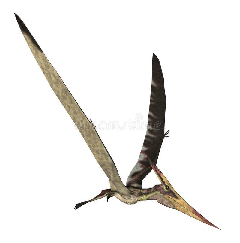 Pteranodon Longiceps stock de ilustración