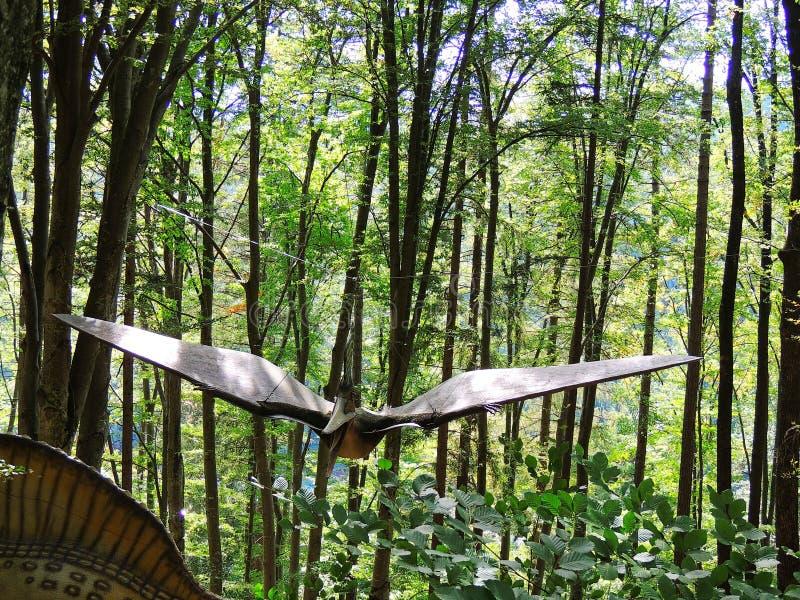 pterodactyl Динозавр летания стоковое изображение rf
