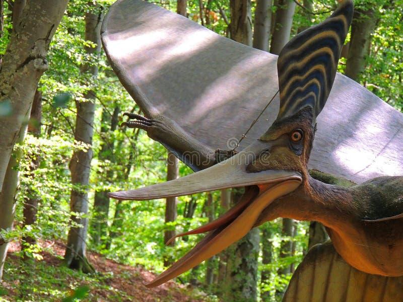 pterodactyl Динозавр летания стоковое изображение