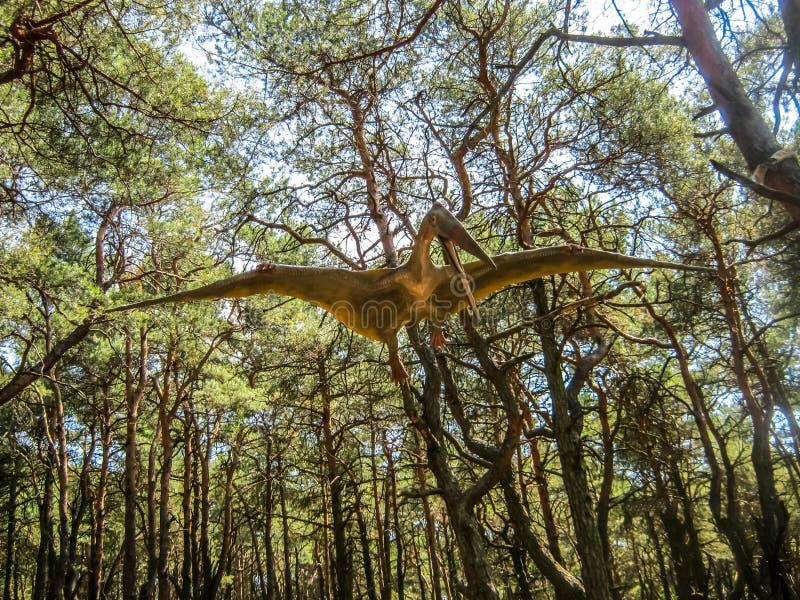 Pterosaur στο δάσος στοκ φωτογραφίες