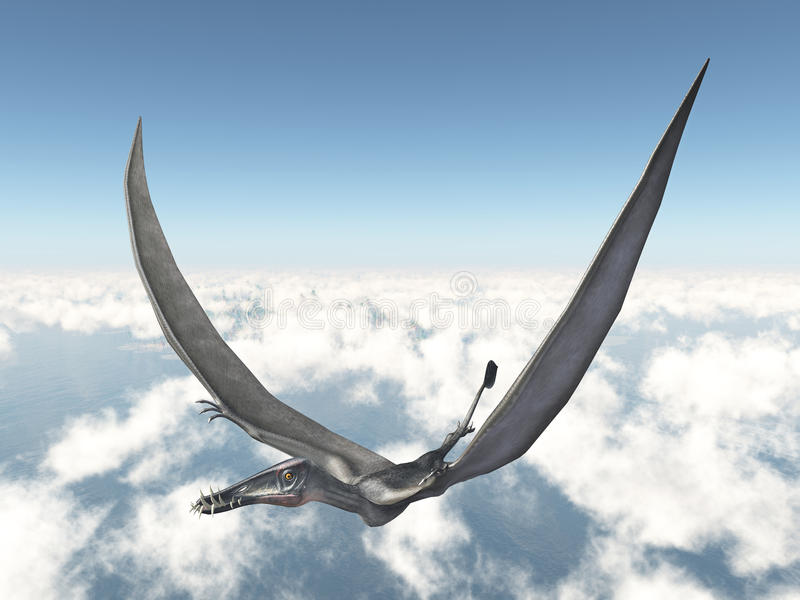 Pterosaur Dorygnathus ilustração royalty free
