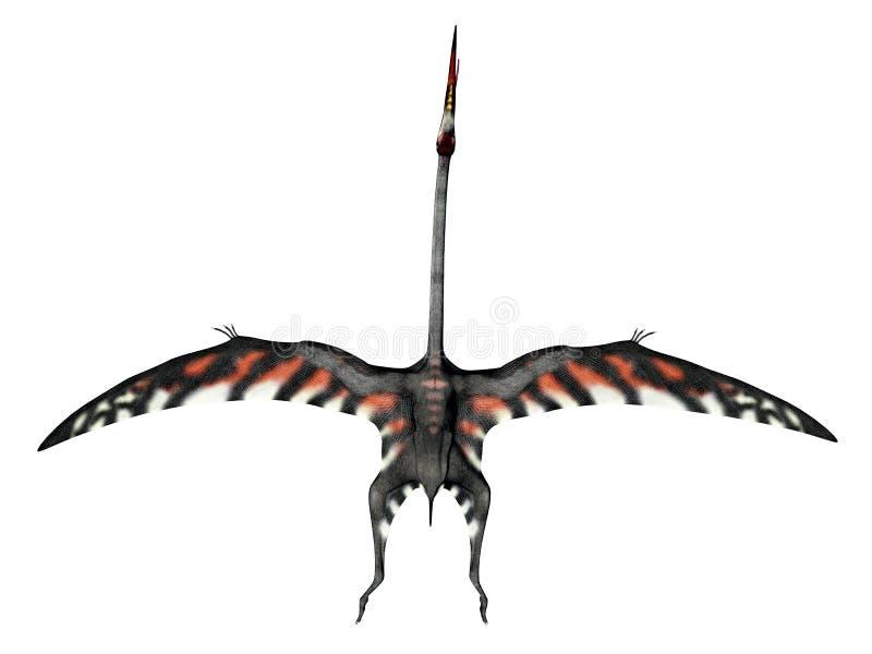 Pterosaur Quetzalcoatlus 皇族释放例证