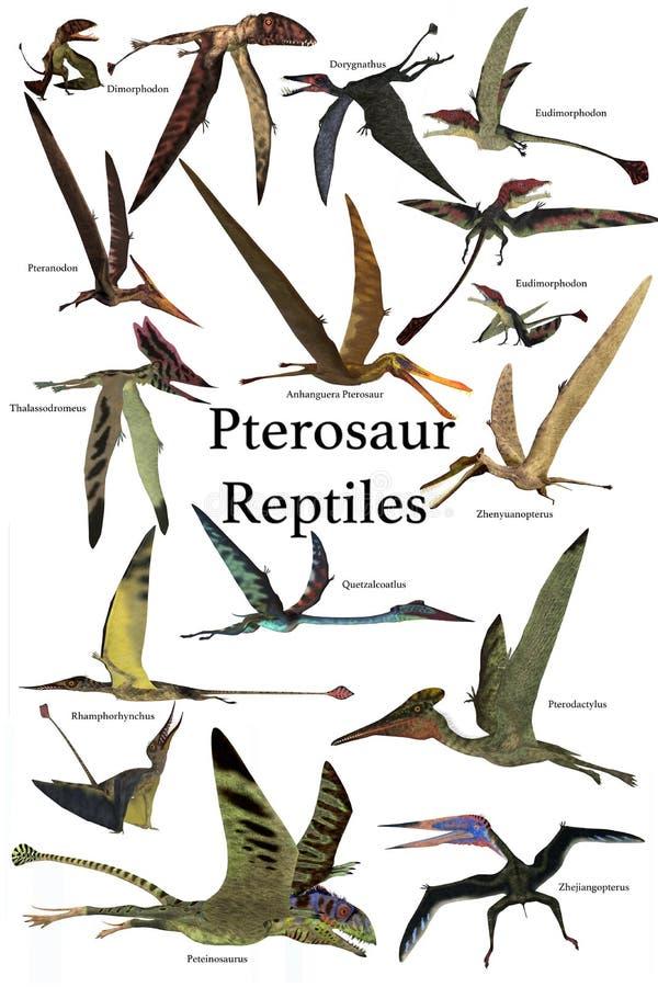 Pterosaur reptilar stock illustrationer