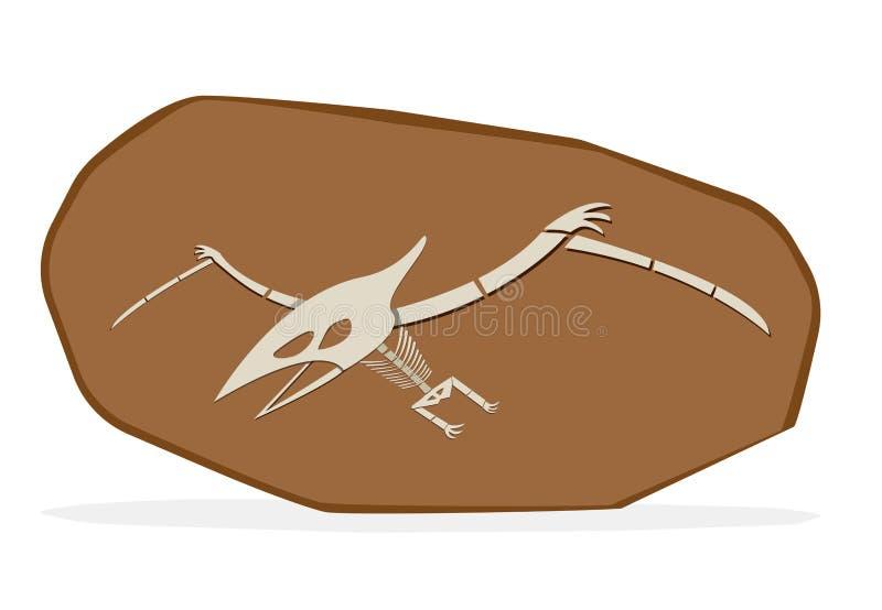 Pterosaursbeen in cray fossiel, op witte vector stock illustratie