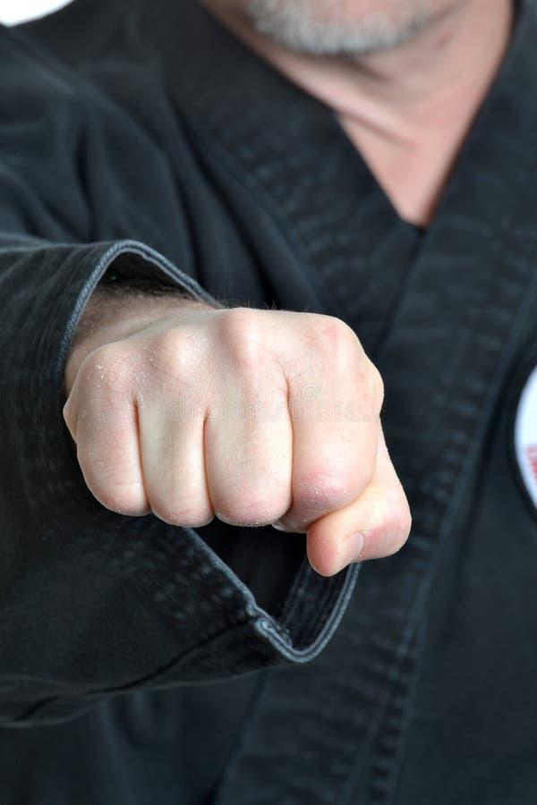 Puño del karate foto de archivo