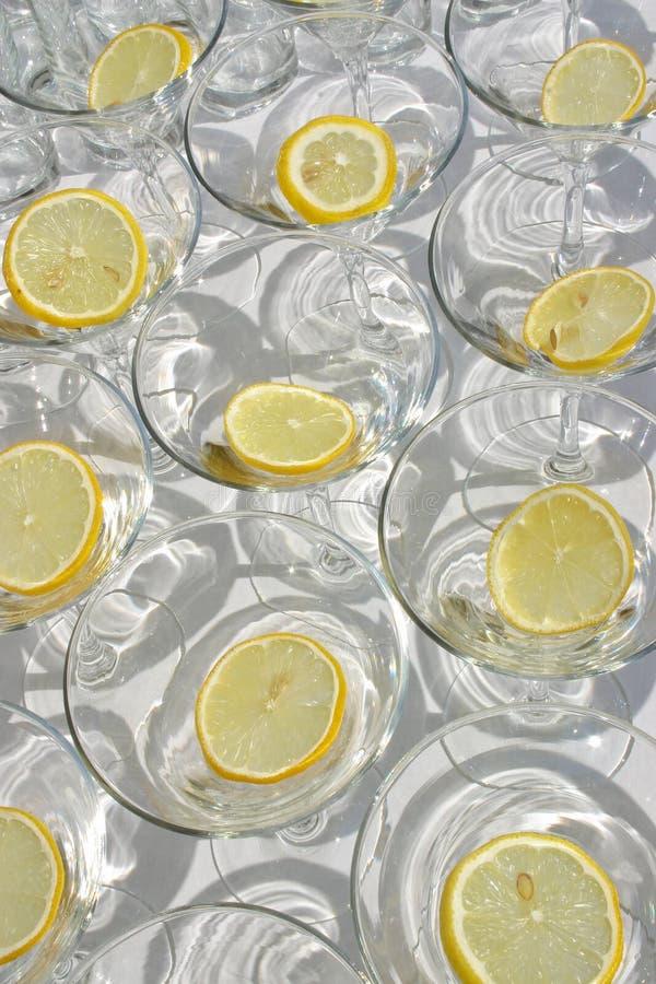puści szkieł cytryny Martini plasterki fotografia royalty free