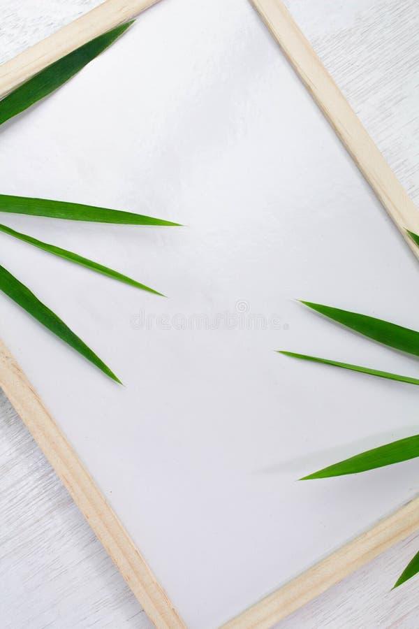 Puści whiteboard i zieleni liście umieszczający na białym tle Kopia Umieszczająca, przestrzeń dla teksta zdjęcia royalty free