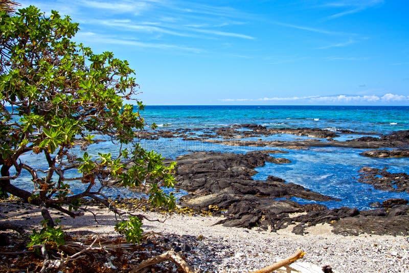 Puako Hawaï photographie stock libre de droits