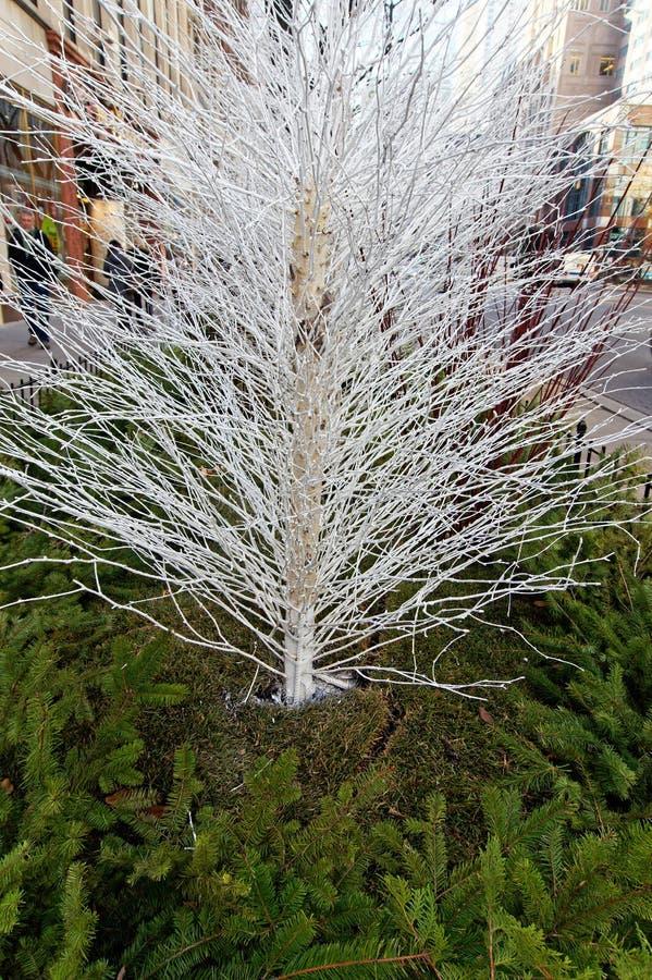 Public Christmas Decorations, Chicago, USA royalty free stock photos