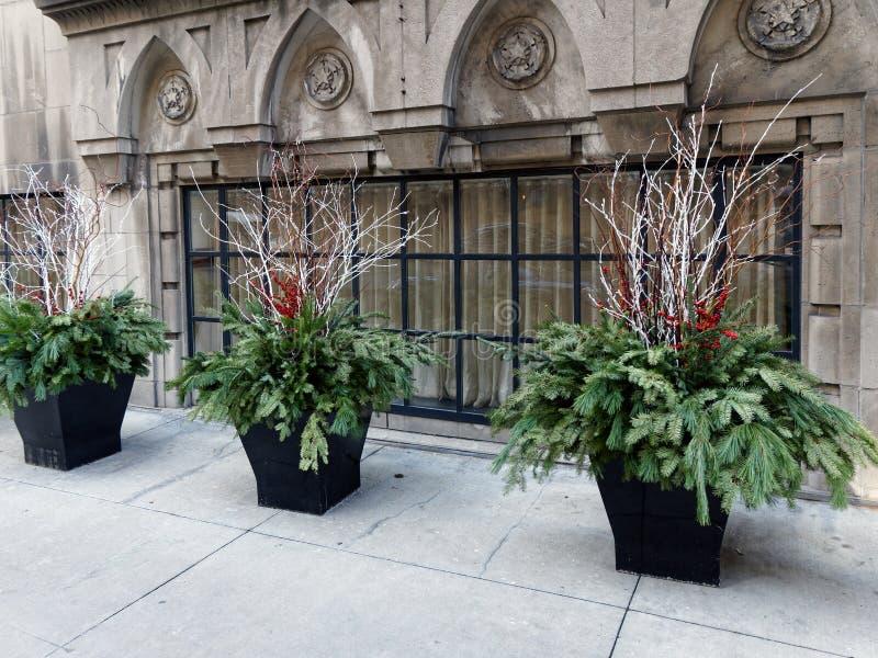Christmas Decorations, Michigan Avenue, Chicago Illinois royalty free stock photo