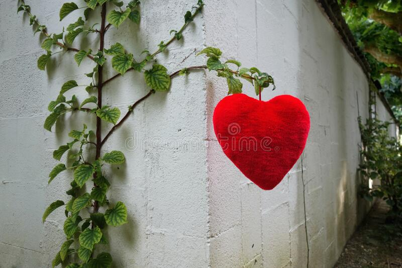 PUBLIC DOMAIN DEDICATION - Pixabay-Pexels digionbew 15. 10-08-16 Heart hanging at the wall LOW RES DSC08804 stock images